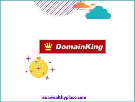 Domainking.ng Review