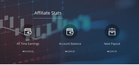 pAYMENT & EARNINGS ON expertnaire review