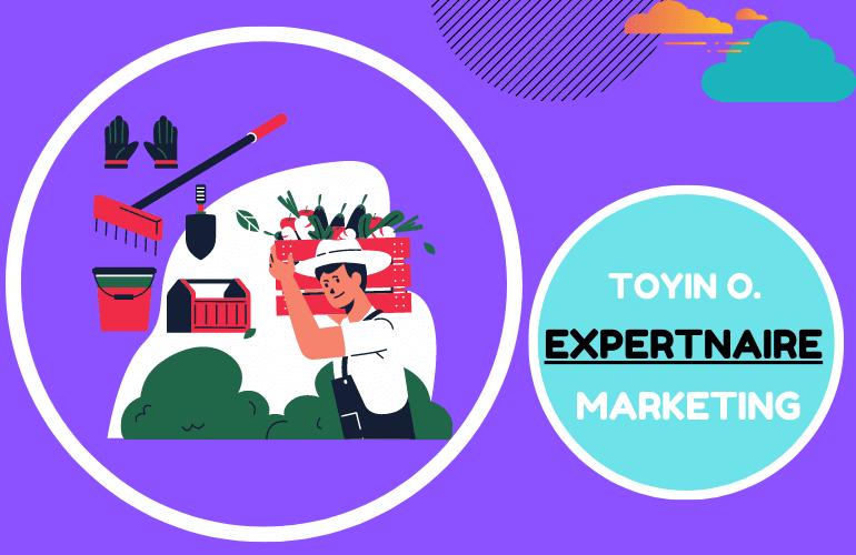 Toyin Omotoso Affiliate Marketing